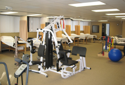 Physical Therapy St Clair Shores MI